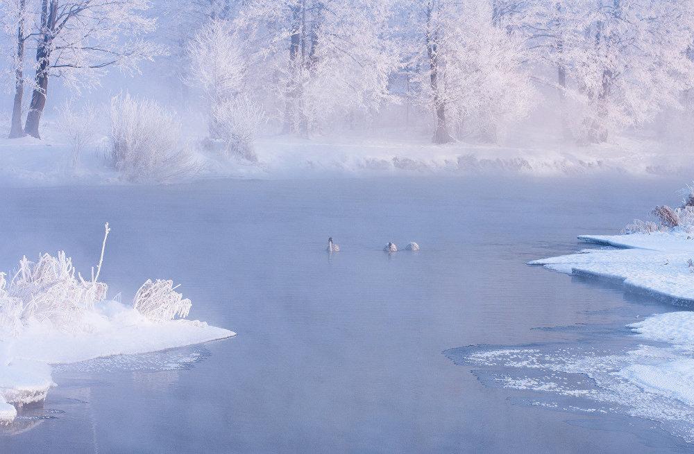 Ảnh: Cảnh tượng mùa đông đẹp như mơ ở Belarus - 9