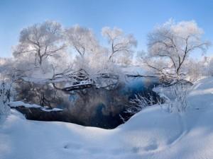 Ảnh: Cảnh tượng mùa đông đẹp như mơ ở Belarus
