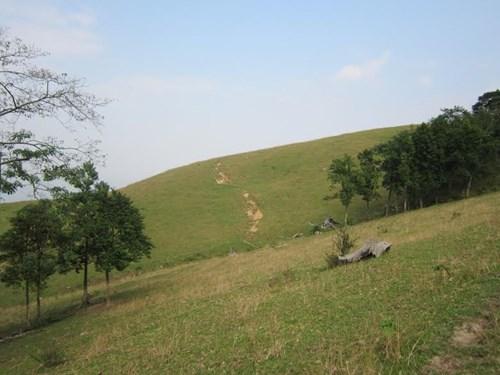 Bí ẩn rừng mộ đá cổ bên dãy Pù Mé - 3