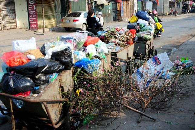 Sau Tết, rác đào, quất tràn ngập phố phường Hà Nội - 2