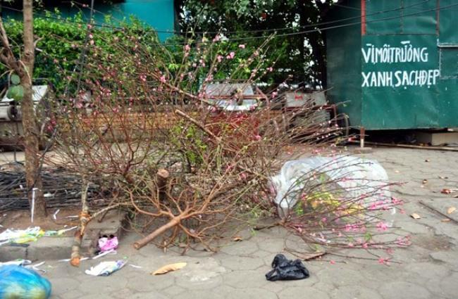 Sau Tết, rác đào, quất tràn ngập phố phường Hà Nội - 3