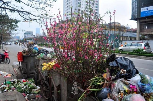 Sau Tết, rác đào, quất tràn ngập phố phường Hà Nội - 8