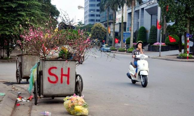 Sau Tết, rác đào, quất tràn ngập phố phường Hà Nội - 9