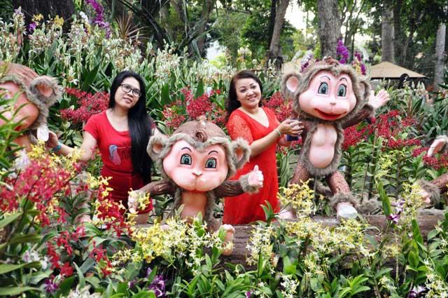 Ngày nghỉ cuối, người Sài Gòn đắm mình trong sắc hoa xuân - 11