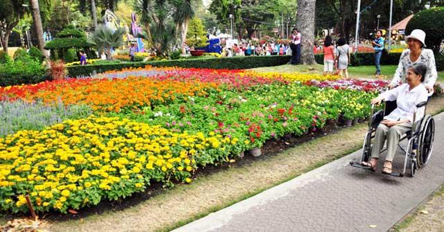 Ngày nghỉ cuối, người Sài Gòn đắm mình trong sắc hoa xuân - 13
