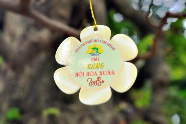 """Ngắm cây khế """"hái vàng"""" tại Hội hoa xuân TP.HCM - 11"""