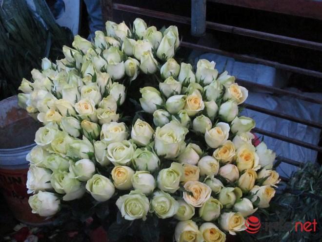 Khan hiếm, hoa hồng Valentine tăng giá mạnh - 1