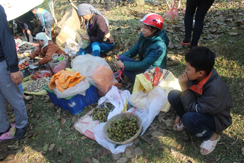 """Lễ hội ném cà chua Thanh Hóa """"gặp khó"""" vì cà chua tăng giá - 4"""