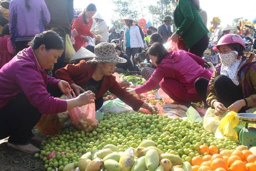 """Lễ hội ném cà chua Thanh Hóa """"gặp khó"""" vì cà chua tăng giá - 5"""