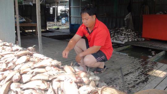 Cá chết trắng sông do thức ăn dư thừa? - 2