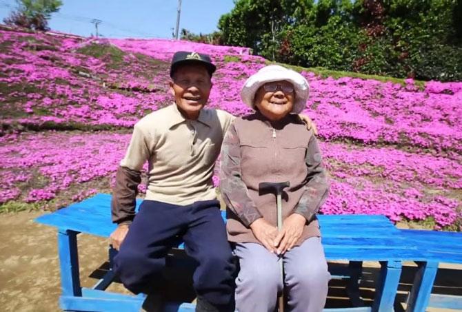 Cụ ông trồng vườn hoa khổng lồ để vợ mù ngửi hương - 1