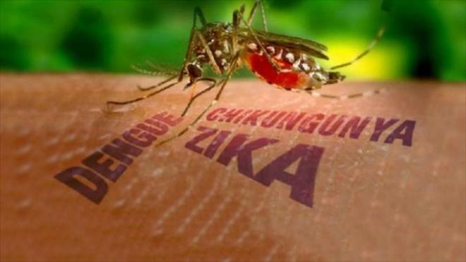 Thiết lập 8 điểm giám sát trọng điểm virus Zika tại khu vực phía Nam - 1