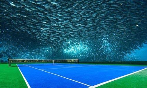 Sân tennis dưới đáy biển: 2,5 tỷ đô cho lịch sử - 1