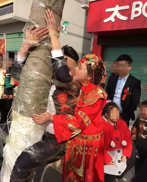 Chú rể bị trói chặt trên cây trong ngày cưới - 3