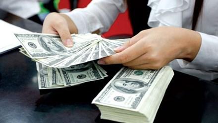 Sau lãi suất USD 0% sẽ hạn chế huy động ngoại tệ - 1