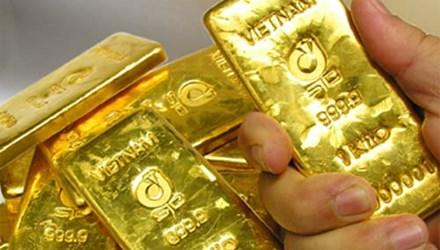 Giá vàng nhích nhẹ, tỷ giá USD có dấu hiệu tăng - 1