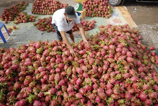 Việt Nam sẽ là ngôi sao sáng tại thị trường Mỹ - 1