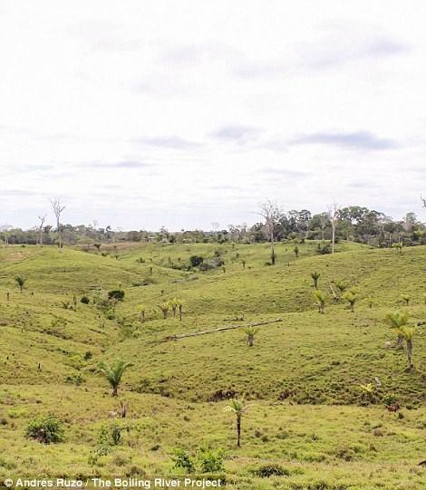 Dòng sông nước nóng huyền bí giữa lòng Amazon - 10