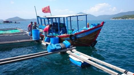 Ngắm cảnh đẹp tuyệt vời trên biển Đầm Môn - 8