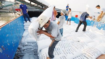 Xuất khẩu gạo 2016: Ngậm ngùi không có thương hiệu Việt - 1