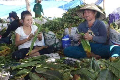 Nhộn nhịp xóm thuốc lào Sài Gòn - 13