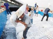 Xuất nhập khẩu - Xuất khẩu gạo 2016: Ngậm ngùi không có thương hiệu Việt