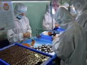 Thị trường - Tiêu dùng - Doanh nghiệp Việt đơn độc ở nước ngoài