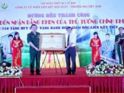 Tin tức trong ngày - Bộ Công Thương nói gì sau khi lãnh đạo Liên kết Việt bị bắt?