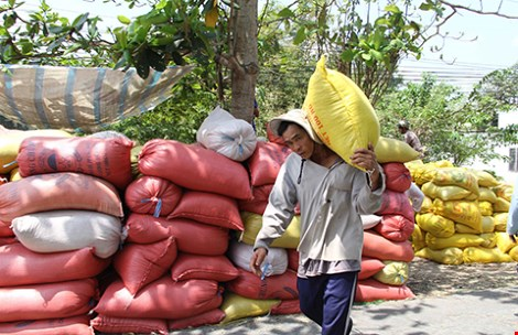 Gạo Việt Nam mang thương hiệu… Trung Quốc - 1