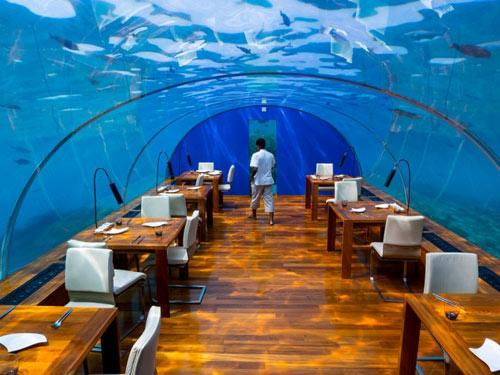 """10 nhà hàng """"dị"""" nhất thế giới ai cũng muốn trải nghiệm - 1"""