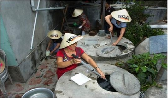 Muỗi vằn nuôi ở Nha Trang áp chế được Zika? - 1