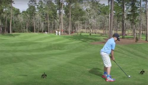 """Tiger Woods """"bái phục"""" golf thủ nhí đánh 1 gậy trúng lỗ - 2"""