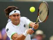 Thể thao - Tennis: Ferrer & 9 tay vợt cả đời bị đánh giá thấp