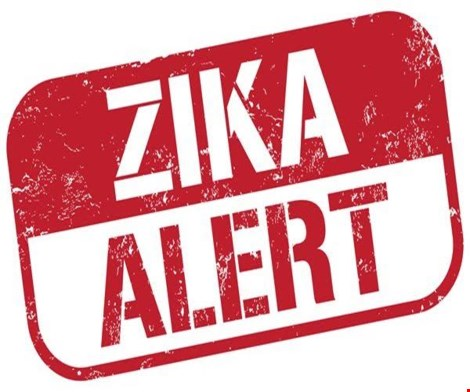 Phát hiện thêm 20 loại muỗi mang virus Zika - 2