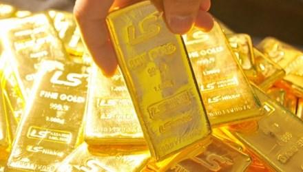 Đầu tuần, giá vàng tiếp tục tăng nhẹ - 1
