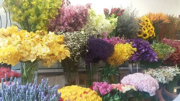 Khan hiếm hàng, giá hoa tươi tăng đột biến - 2