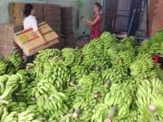 Thị trường - Tiêu dùng - Chuối có giá nhờ xuất khẩu