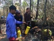 Tin tức trong ngày - Cháy rừng phòng hộ, xách bình xịt chữa cháy!