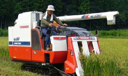 Nhật Bản: Gom đất nông nghiệp bỏ hoang vào ngân hàng - 1