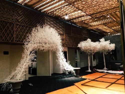 Không gian tiệc cưới đậm chất cổ điển của Đinh Ngọc Diệp - 1