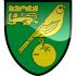 Chi tiết Norwich - Man City: Chống trả kiên cường (KT) - 1