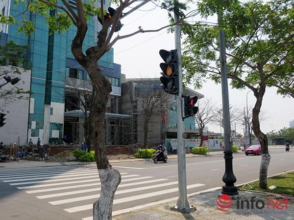 Đà Nẵng: Lạ lẫm với đèn tín hiệu dành cho người đi bộ - 1