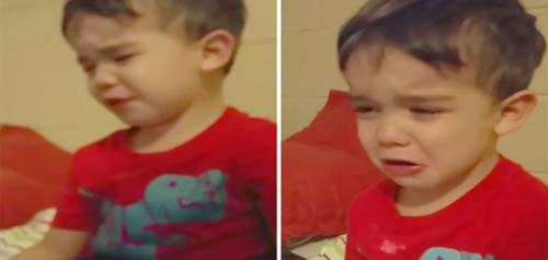 Cậu bé mếu máo vì không nỡ ăn món ăn mẹ làm - 1
