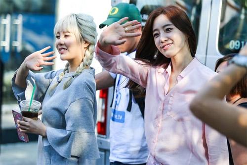 Fan Việt rượt đuổi T-ara khiến đường phố tắc nghẽn - 1