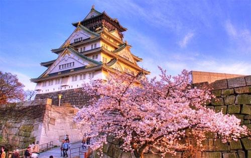 Chiêm ngưỡng vẻ đẹp mùa hoa anh đào tại miền Trung Nhật Bản - 1
