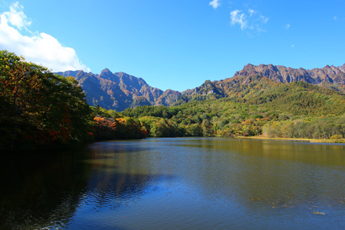 Chiêm ngưỡng vẻ đẹp mùa hoa anh đào tại miền Trung Nhật Bản - 4