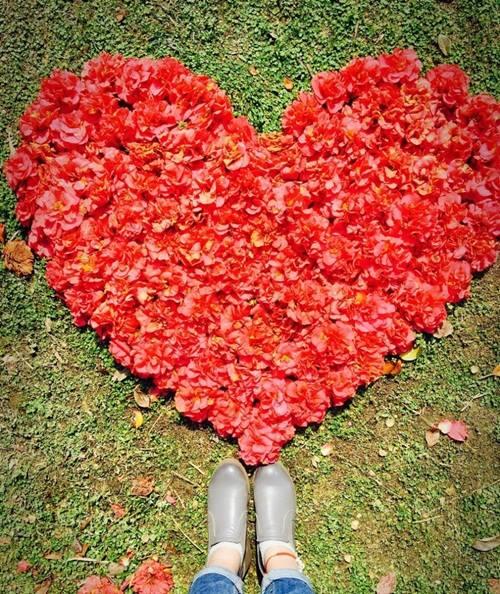 Nữ sinh xinh đẹp xếp hoa tỏ tình với bạn trai phương xa - 6