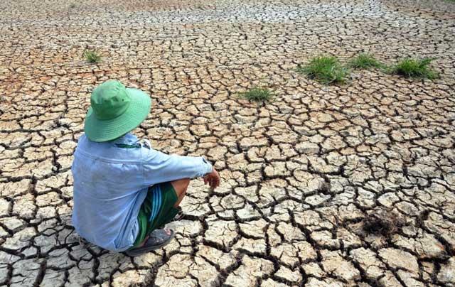 Ảnh: Ruộng nứt toác, mặn chát, lòng dạ như bị xát muối - 1