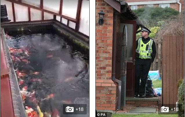 Cặp sinh đôi chết đuối trong bể cá vì bố mẹ bất cẩn - 3