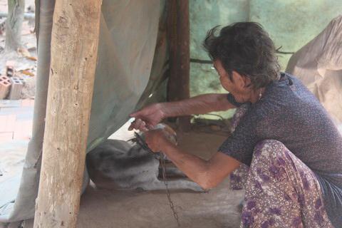 Cụ bà 80 tuổi luyện chó đi giao hàng - 2